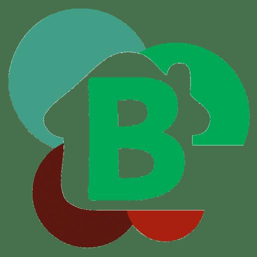 favicon entreprise Benjamin Brunea)u